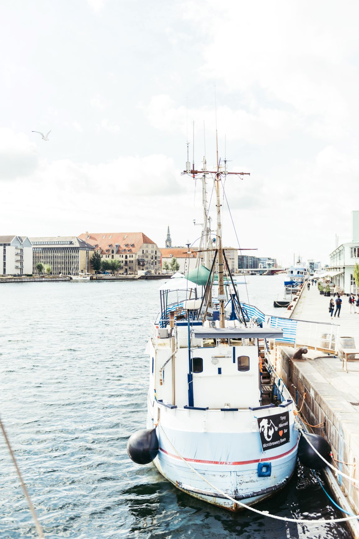 5 things to do in Copenhagen thumbnail